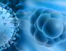 ЦМВ у женского пола: лечим болезнь правильно и своевременно