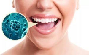 Бактерии во рту